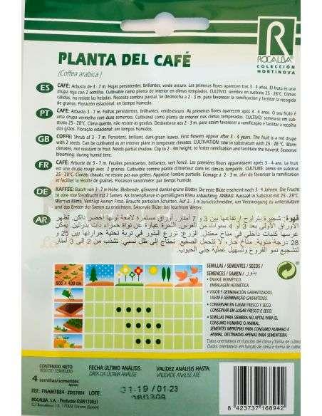 Semillas de Planta del Café