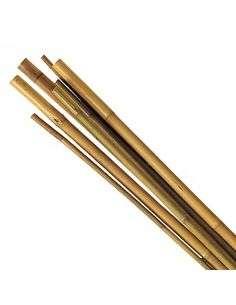 Tutor de bambú 1,5m. Calibre 6/8