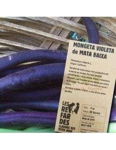 Semillas Ecológicas Judía Violeta Mata Baja