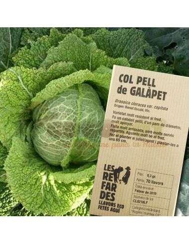 Semillas Ecológicas Col Galàpet