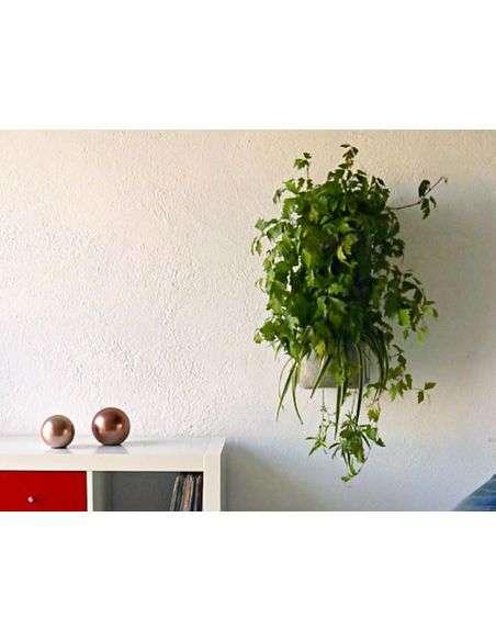 Jardín Vertical 3 Macetas con Soporte