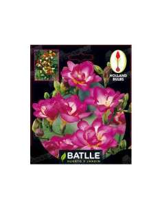 Freesia Doble Violeta 10 ud. Semillas Batlle - 1