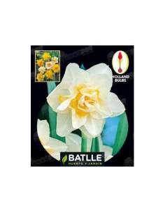 Narciso Doble Blanco 4 ud. Semillas Batlle - 1