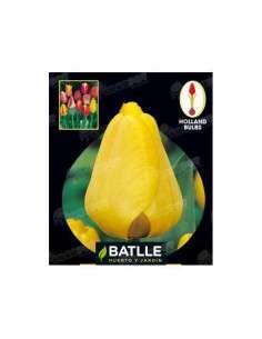 Tulipán Darwin Amarillo Oro 3 ud. Semillas Batlle - 1