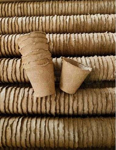 Macetas Ecológicas Ø6cm. Biodegradables