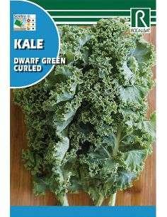 Semillas de Col Kale Dwarf Berza