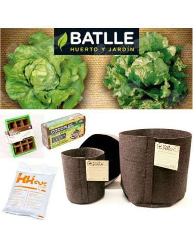 Lechuga Kit ECO COCOPOT - 1