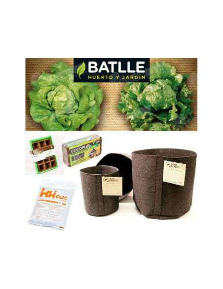 Lechuga Kit ECO COCOPOT - 5