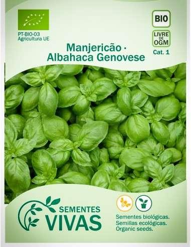Semillas Ecológicas Albahaca genovesa - 2g.