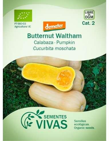 Semillas Ecológicas Calabaza Butternut Waltham - 2g.