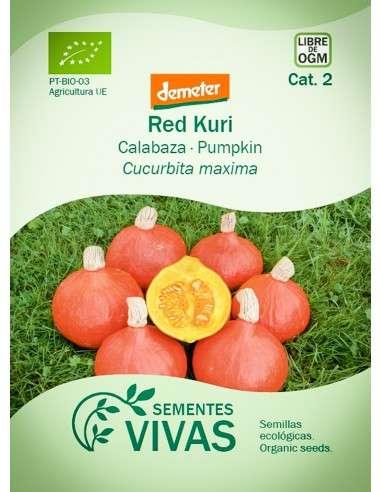Semillas Ecológicas Calabaza Red Kuri - 2g.