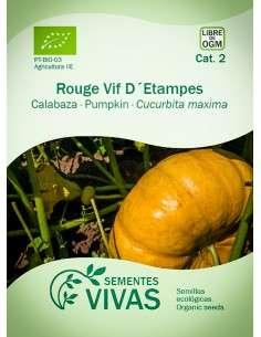 Semillas Ecológicas Calabaza Rouge vif dEtampes - 4g.