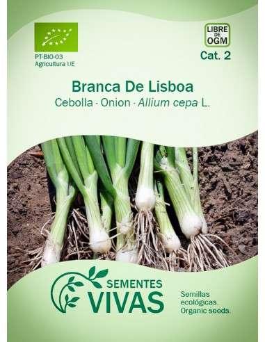 Semillas Ecológicas Cebolla Branca de Lisboa - 1g.