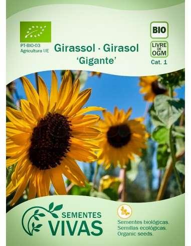 Semillas Ecológicas Girasol Gigante - 2g.
