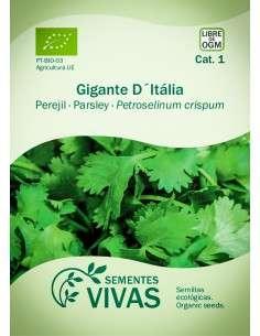Semillas Ecológicas Perejil Gigante dItalia - 2g.