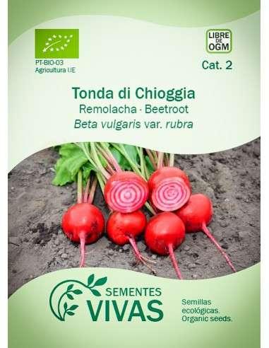 Semillas Ecológicas Remolacha Chioggia - 3g.