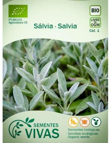 Semillas Ecológicas Salvia - 1g.
