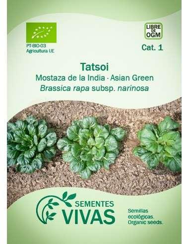 Semillas Ecológicas Verdura asiática Tatsoi - 2g.