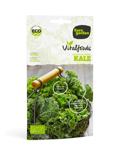 Semillas Kale Westlande Herfst Vitalfoods ECO