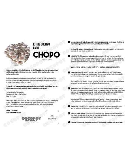 Bala Setas de Chopo Germinada Ecológico