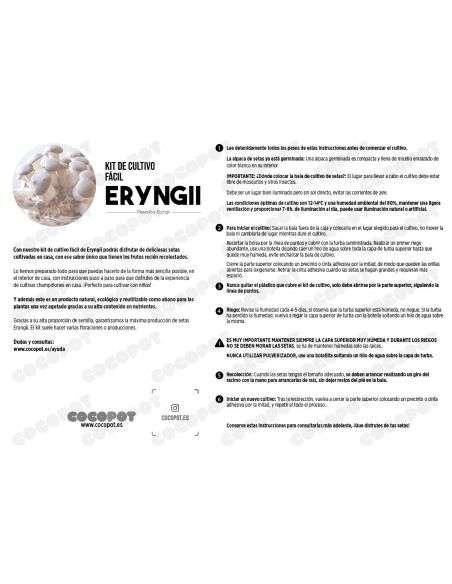 Alpaca Setas de CEP - Eryngii Negra Ecológica