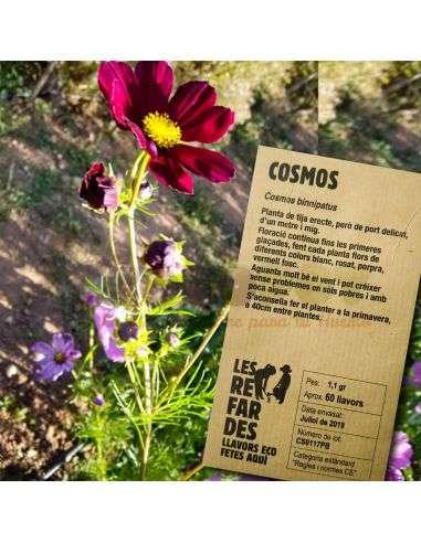 Semillas Ecológicas de Cosmos