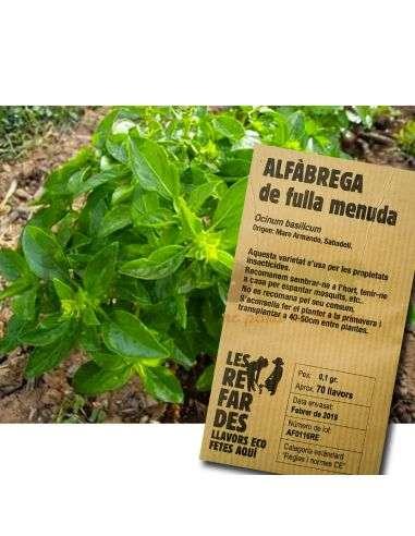 Semillas Ecológicas de Albahaca de hoja pequeña