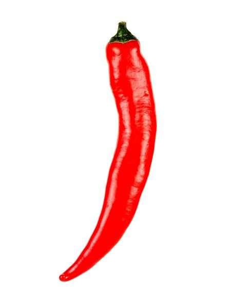 2u. Plantel Ecológico Pimiento Picante Chile Red Devil