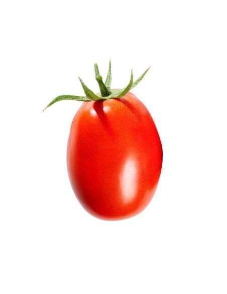 3u. Plantel Ecológico Tomate de Pera