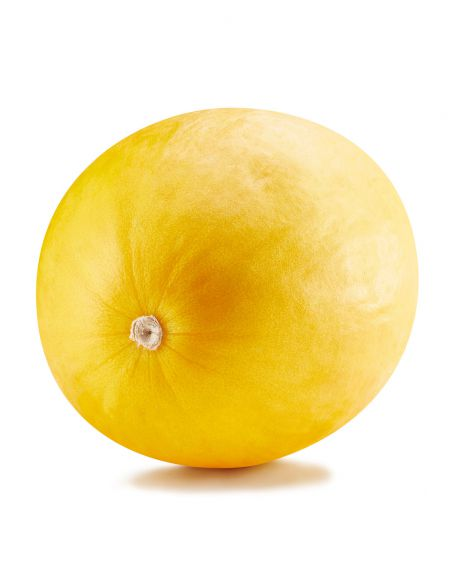 3u. Plantel Ecológico Melón Amarillo