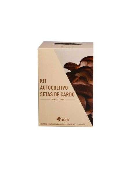 Kit Autocultivo Setas de Cardo