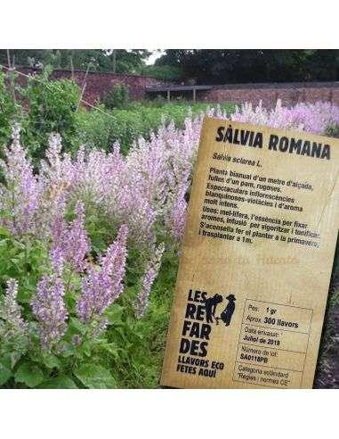 Semillas Ecológicas Salvia Romana 1g.