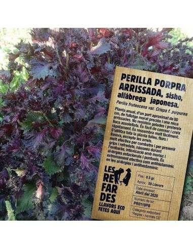 Semillas Ecológicas Albahaca japonesa, Perilla Púrpura rizada 0,1g.