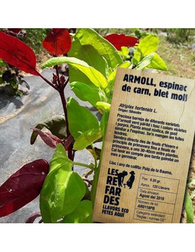 Semillas Ecológicas Armuelle, Espinaca de carne, Bledos Molles 0,2g.