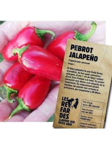 Semillas Ecológicas Pimiento Chile Jalapeño