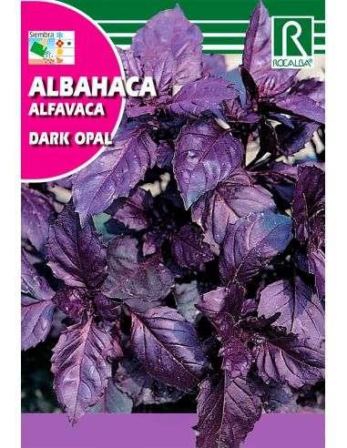 Semillas de Albahaca Púrpura Dark Opal
