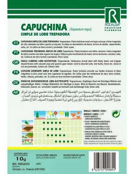 Semillas de Capuchina Trepadora Simple de Lobb