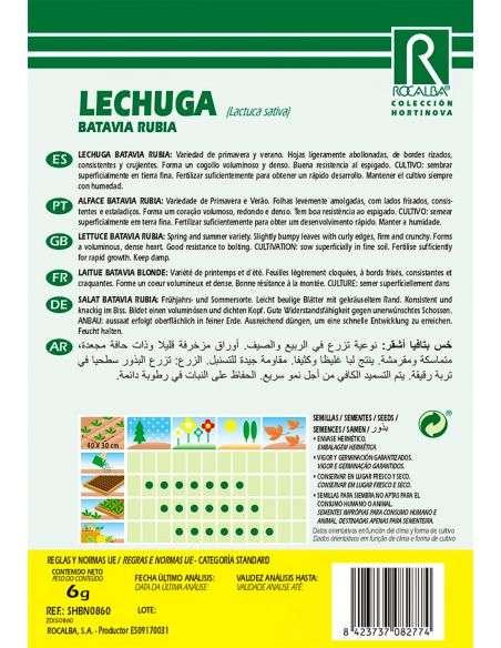 Semillas de Lechuga Batavia Rubia