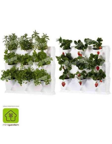 Jardín vertical Minigarden Blanco MiniGarden - 3