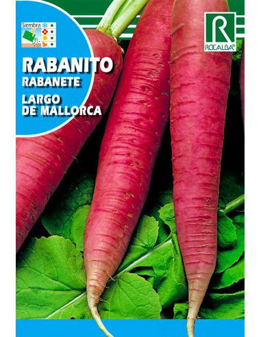 Semillas de Rabanito Largo de Mallorca