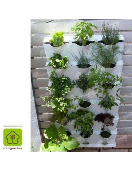 Jardín vertical Minigarden Blanco MiniGarden - 9