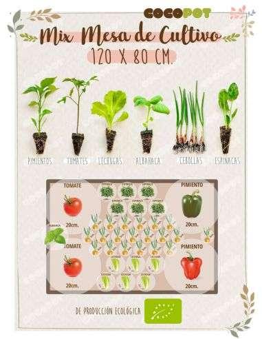 "Plantel Ecológico ""Mix Mesa Cultivo"" 120x80 Plantas variadas"