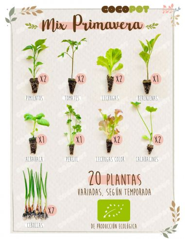 "Plantel Ecológico ""Mix Primavera"" 20 Plantas variadas"