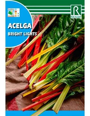 """Semillas de Acelga de Colores """"Bright Lights"""" 10g."""