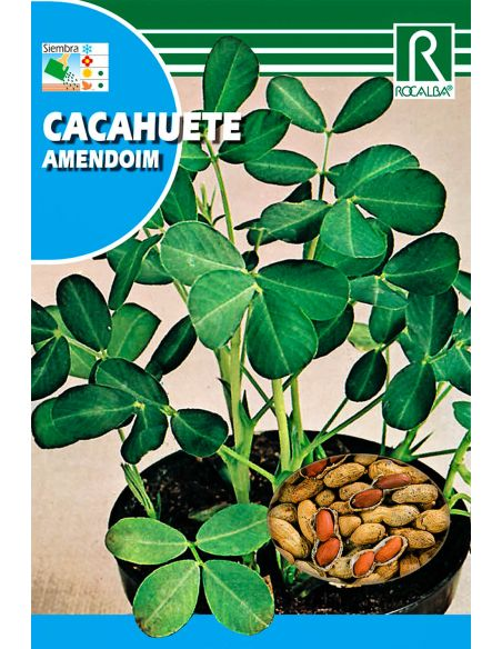 Semillas de Cacahuete 10g.
