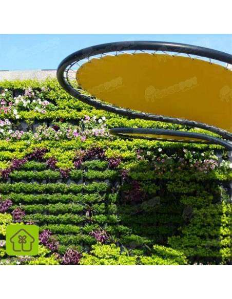 Jardín vertical Minigarden Blanco MiniGarden - 16