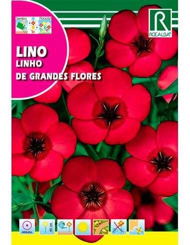 Semillas de Lino Rojo de Grandes Flores 6g.