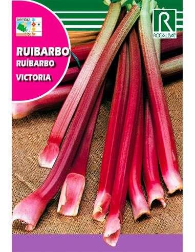 Semillas de Ruibarbo Victoria 1g.