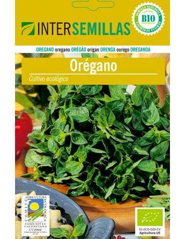 Semillas de Orégano Ecológicas
