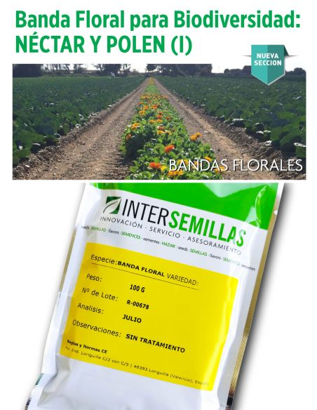 Banda Floral Néctar y Polen 1 100g Melíferas porte medio, para hileras entre cultivos